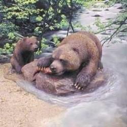 Vissende Grizzlybeer met...
