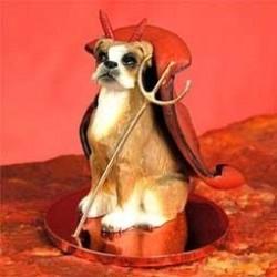 Boxer Mijn Duiveltje hond