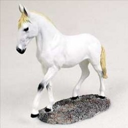 Wit Paard In Beweging