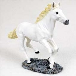 Wit Paard In Galop