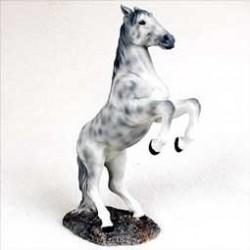 Schimmel Paard Stijgerend