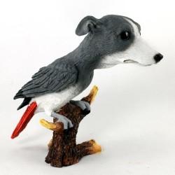 Bird Dog Mishap