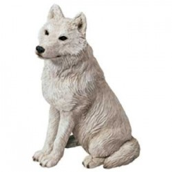 Wolf, Artic
