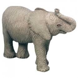 Afrikaanse olifant kalf