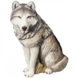 Wolf, grijs