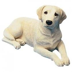 Labrador Retriever, geel